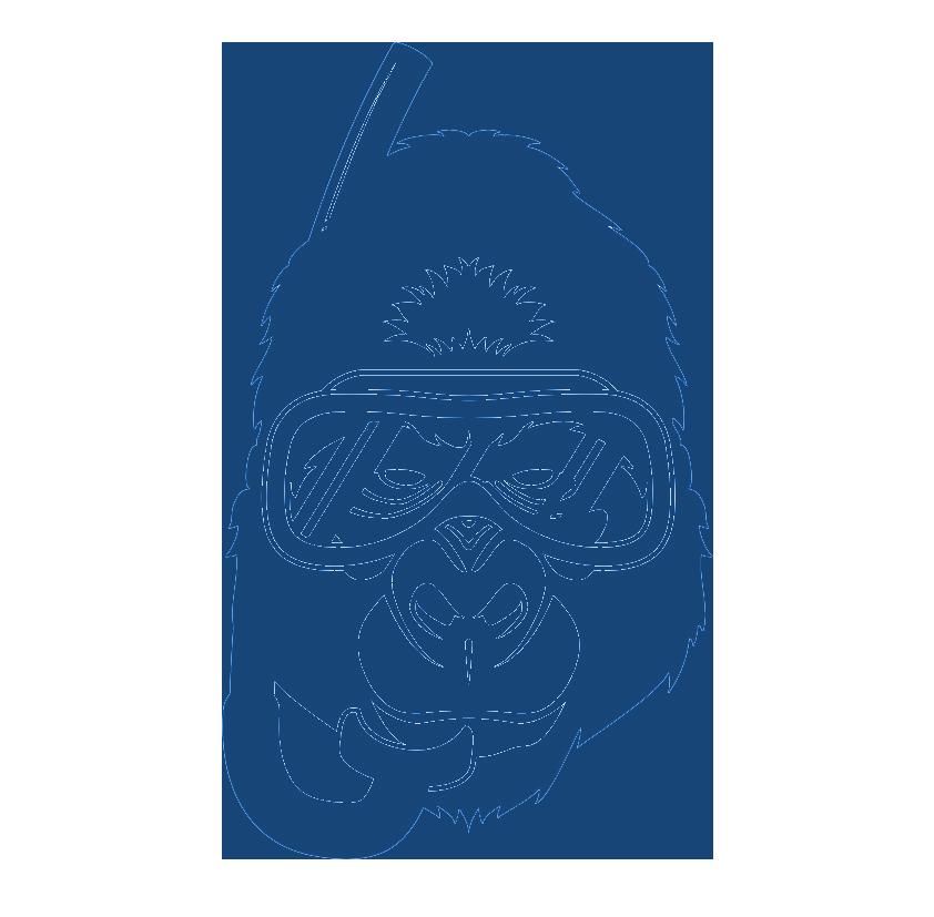 Watermonkey Logo